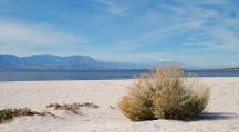 Environment Program: Solving the Salton Sea crisis
